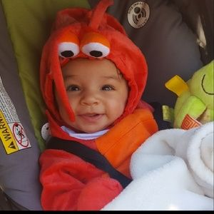 Target Costumes - Baby Lobster Costume  sc 1 st  Poshmark & Target Costumes   Baby Lobster Costume   Poshmark